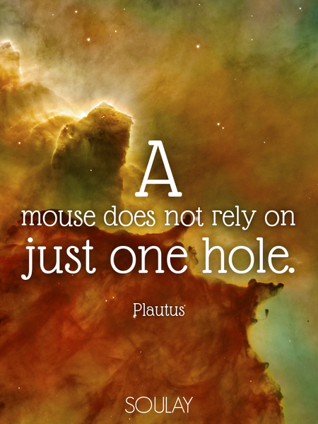A mouse does not rely on just one hole. (Poster)