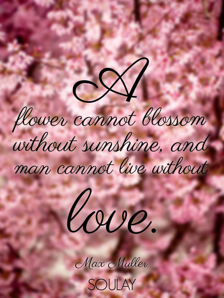 A flower cannot blossom without sunshine, and man cannot live without love. (Poster)