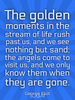 The golden moments in the stream of life rush past us, and we see n... - Quote Poster