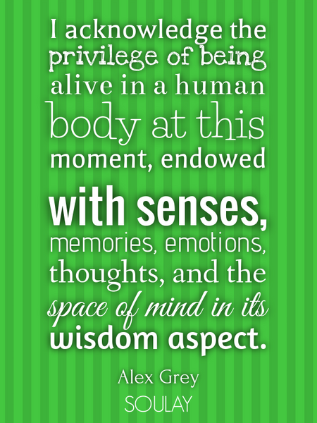 I acknowledge the privilege of being alive in a human body at this moment, endowed with senses, m... (Poster)