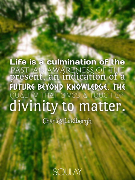 Life is a culmination of the past, an awareness of the present, an indication of a future beyond ... (Poster)