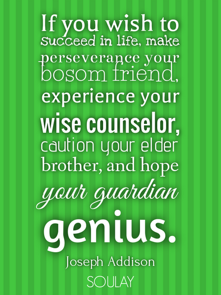 If you wish to succeed in life, make perseverance your bosom friend, experience your wise counsel... (Poster)