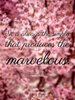 It is always the simple that produces the marvelous. - Quote Poster