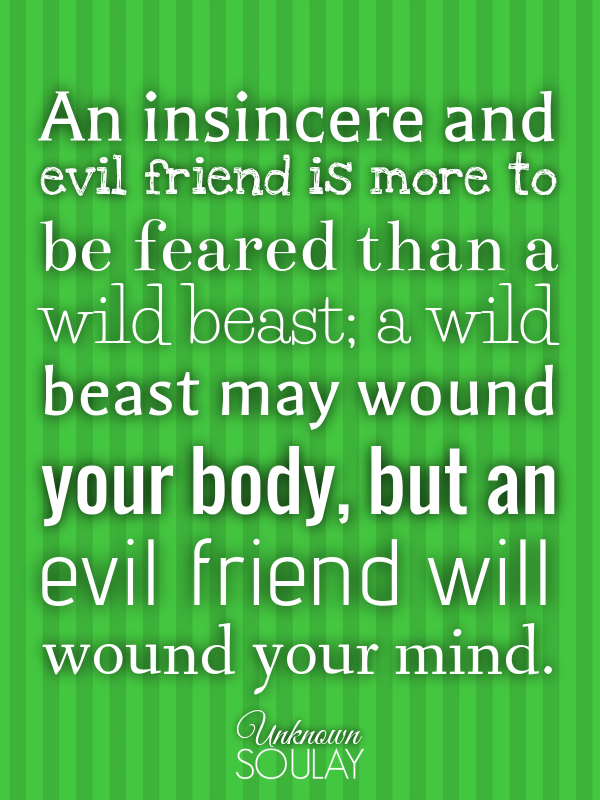 An insincere and evil friend is more to be feared than a wild beast... - Quote Poster