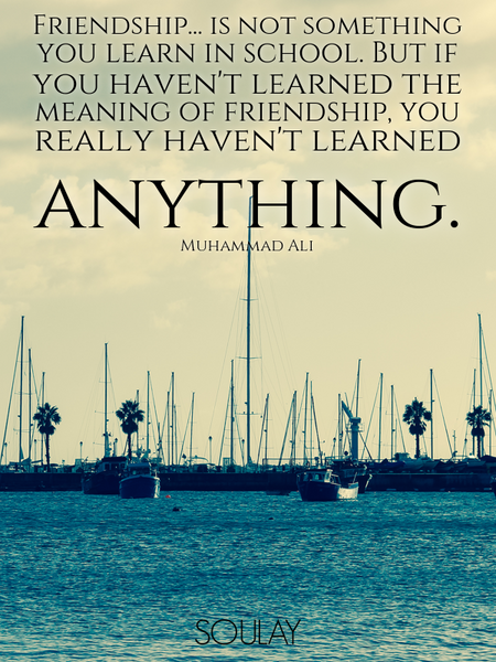 Friendship... is not something you learn in school. But if you haven't learned the meaning of fri... (Poster)