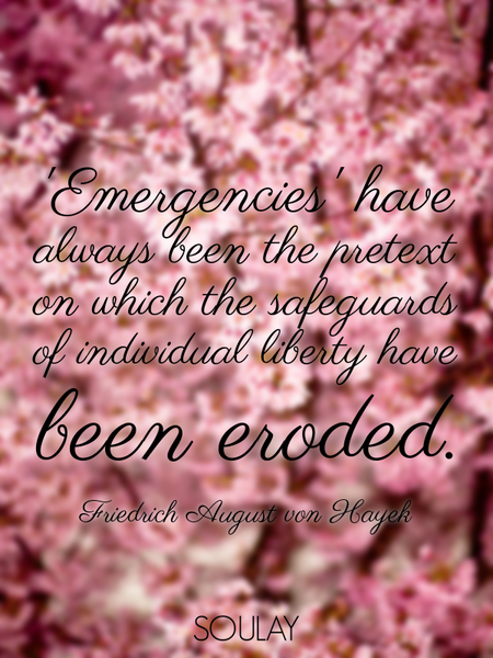 'Emergencies' have always been the pretext on which the safeguards of individual liberty have bee... (Poster)