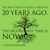 The best time to plant a tree was 20 years ago. The second best time is now. - Chinese proverb - Quote T-Shirt Design