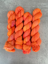 Load image into Gallery viewer, Rock Lobster BFL DK