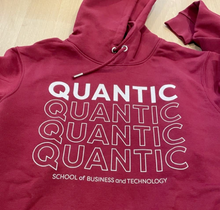 Load image into Gallery viewer, Unisex Quantic Quad Hoodie - Multiple Colors