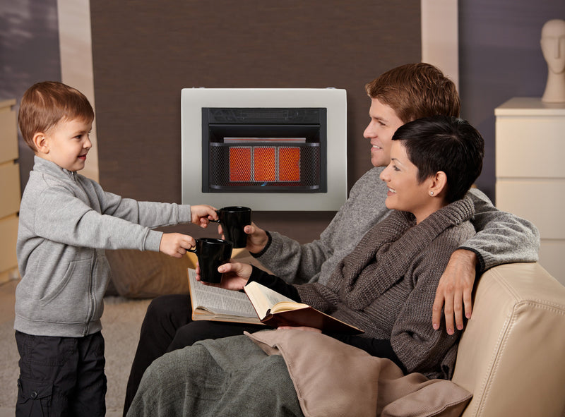 Cedar Ridge Hearth Dual Fuel Ventless Infrared Gas Space Heater With Blower - 3 Plaque, 20,000 BTU, T-Stat Control - Model