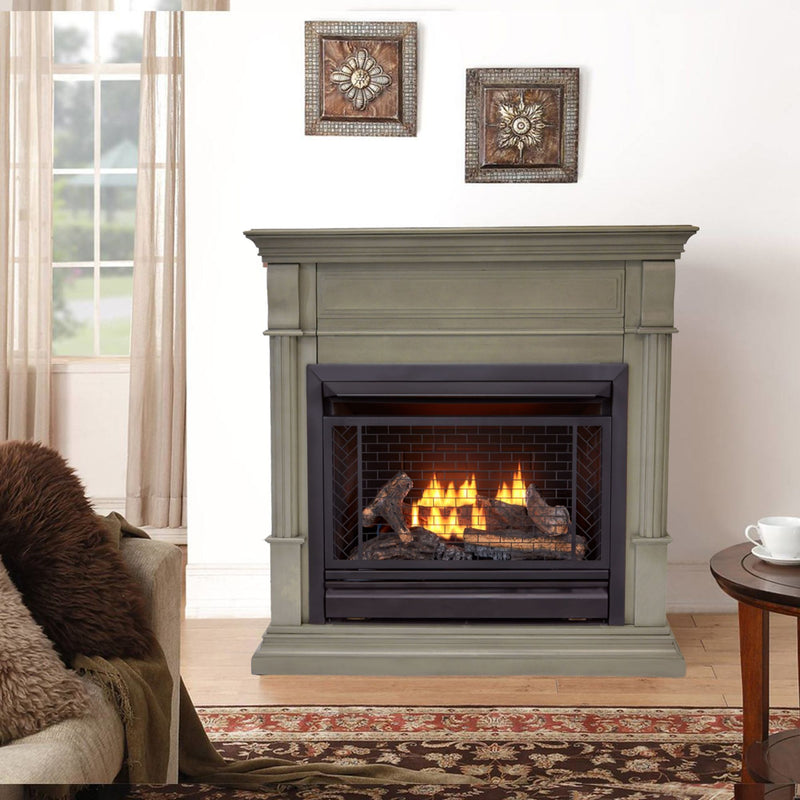 Bluegrass Living Vent Free Propane Gas Fireplace System - 26,000 BTU, Remote Control, Gray Finish - Model