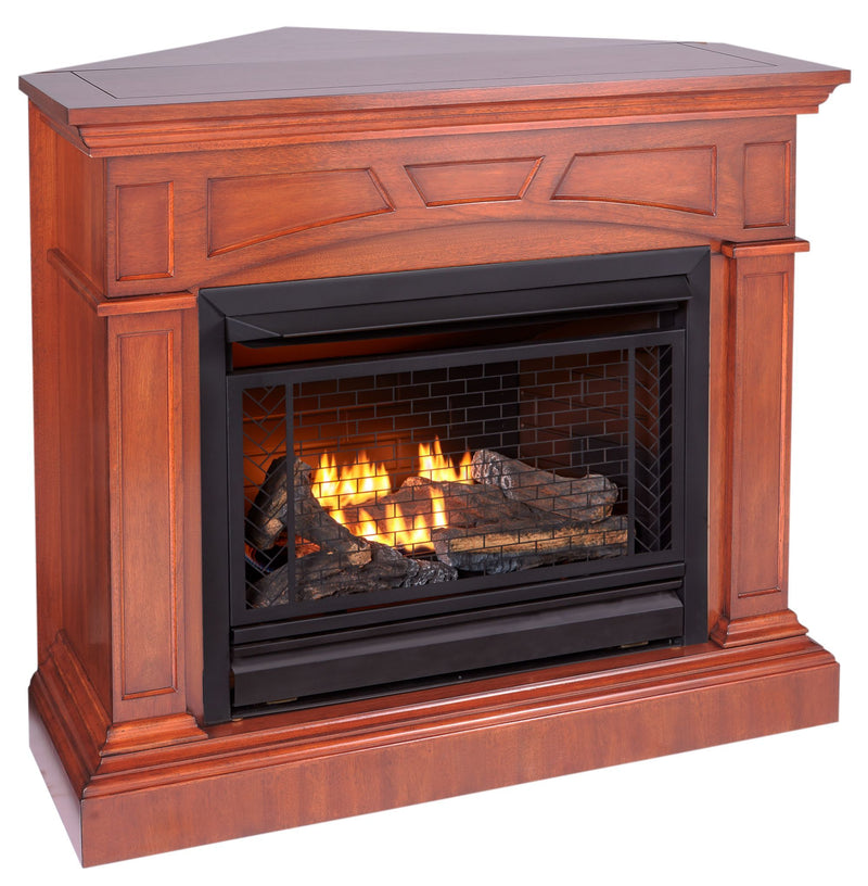 Bluegrass Living Vent Free Propane Gas Fireplace System - 26,000 BTU, Remote Control, Heritage Cherry Finish - Model