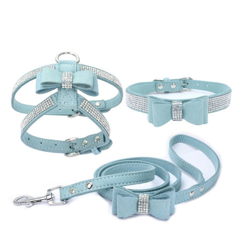 Blue 3-Piece Set for pet