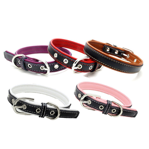 Stylish leather collar for dogs