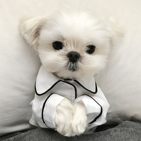 White luxury pet pijamas
