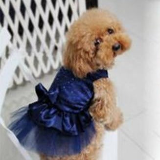 Lace dress for pet