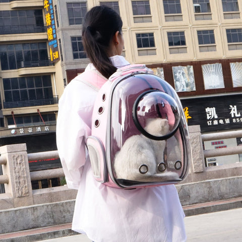 Pink transparent backpack for pet