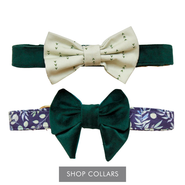 Shop Collars - Green Velvet dog collar with light green print dog bow tie and navy floral print dog collar with dark green velvet dog bow tie.