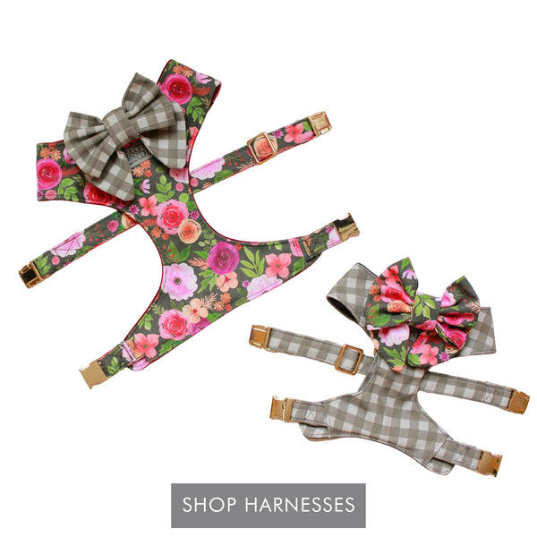 Shop Harnesses - Floral print dog harness with gray check dog bow and gray check dog harness with floral print dog bow