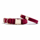 Velvet Mulberry Classic Dog Collar