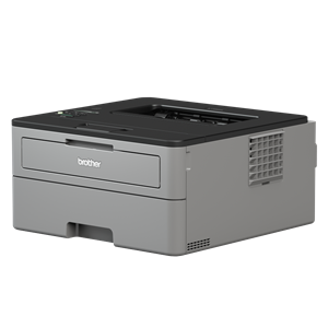 BROTHER HL-L2350DW Compact Mono Laser Printer
