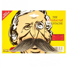 Load image into Gallery viewer, aristocrat grey moustache