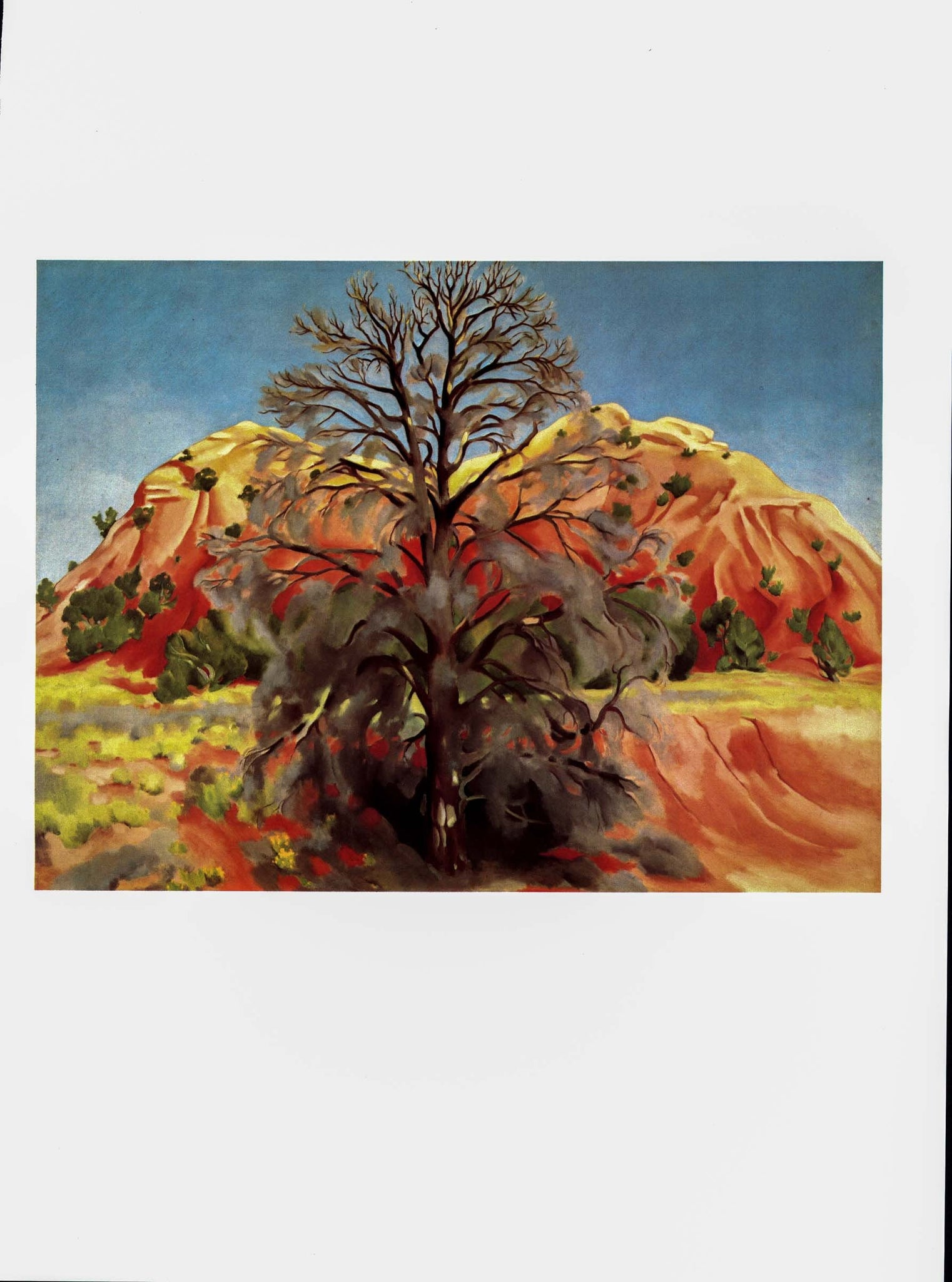 "Georgia O'Keeffe print [1945] ""Dead Tree with Pink Hill"" Original vintage color book print For framing"