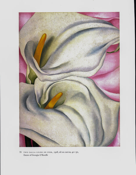 "Georgia O'Keeffe vintage art book plate [1927/8] ""Two Calla Lilies on Pink / Red Poppy"" For the kitchen"
