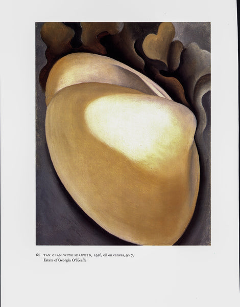 "Georgia O'Keeffe vintage art book plate [1926/7] ""Tan Clam with Seaweed / Seaweed"" For the beach house"