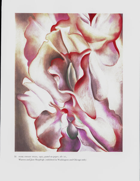 "Georgia O'Keeffe vintage art book plate [1926/7] ""Closed Clam Shell / Pink Sweet Peas"" Housewarming gift"