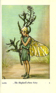 The Shepherd's-Purse Fairy Cicely Mary Barker Flower Fairies of the Spring Vintage book page Nursery Decor
