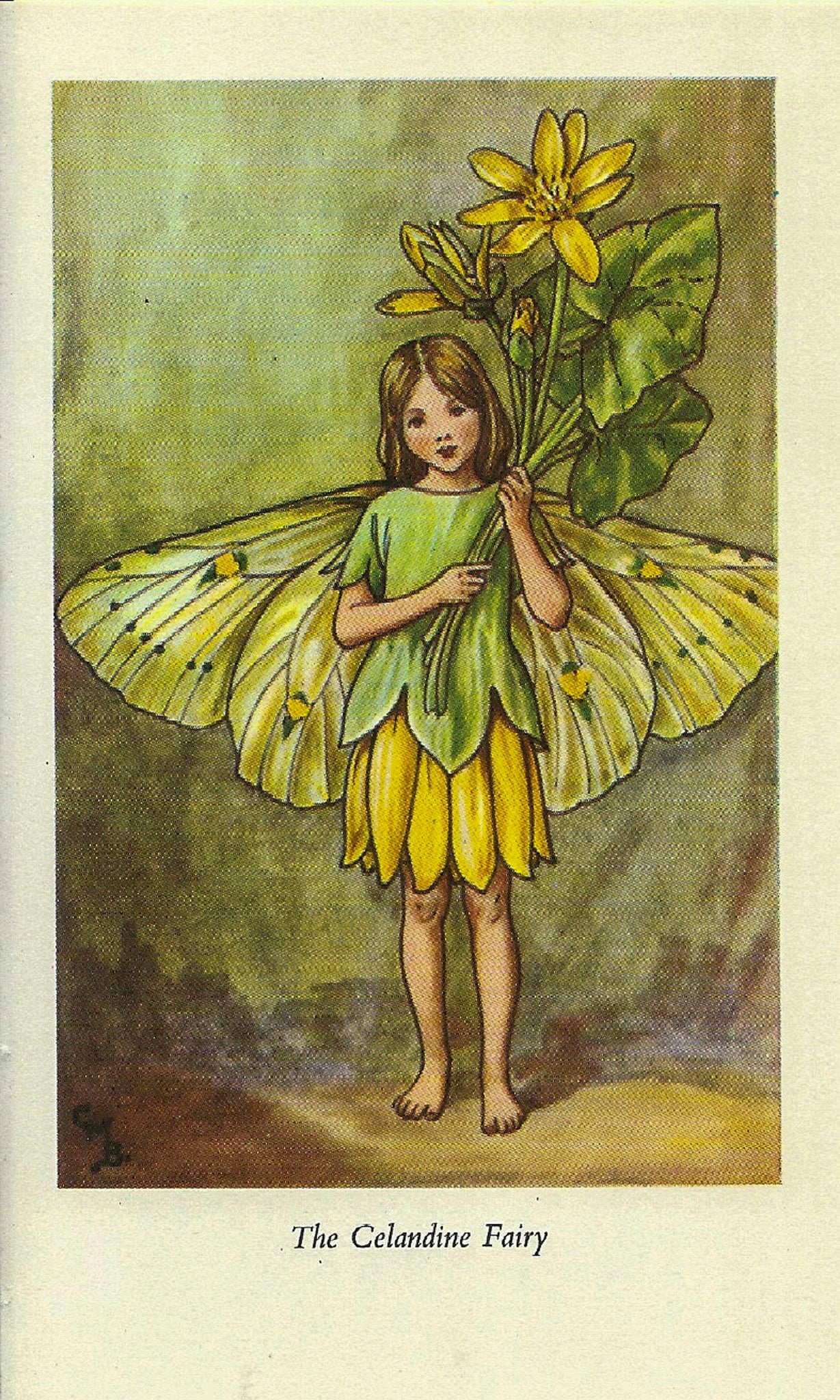The Celandine Fairy Cicely Mary Barker Flower Fairies of the Spring Vintage book page Nursery Decor