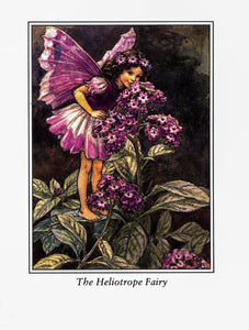 "Flower Fairies Cicely Mary Barker [1944] ""The Heliotrope Fairy"" & ""The Marigold Fairy"" vintage book page"