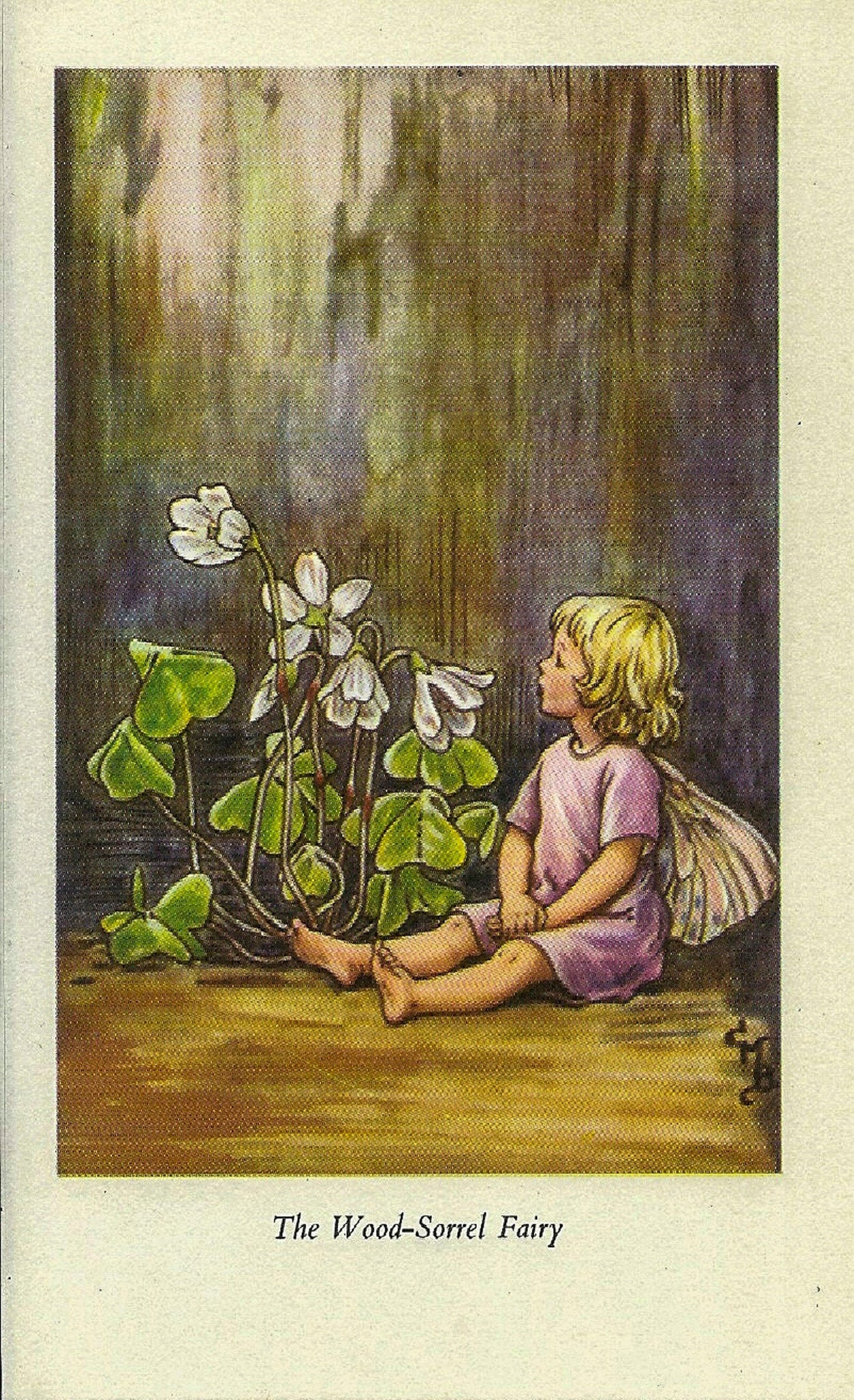 The Wood-Sorrel Fairy Cicely Mary Barker Flower Fairies of the Spring Vintage book page Nursery Decor