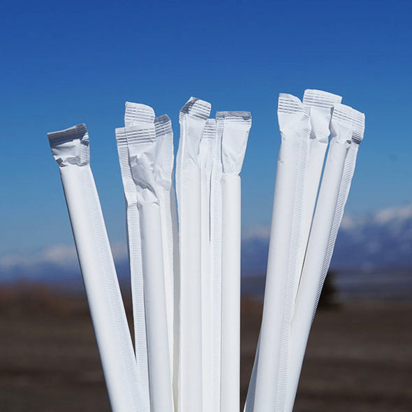 Wrapped Jumbo Paper Straws