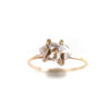 Herkimer Diamond Small Claw Ring