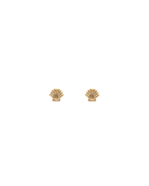 pair of small gold scallop shell stud earrings