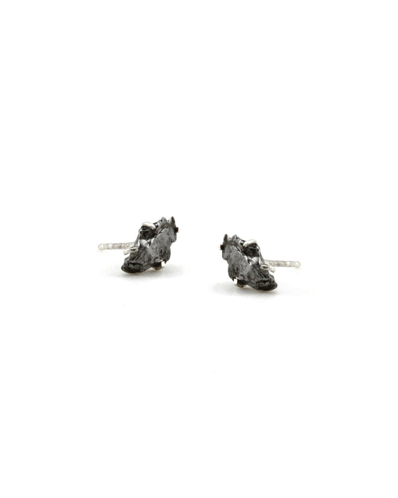 Meteorite Raw Stone Earrings