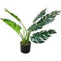 Artificial Monstera Plant 70cm - Nortje - Faux Flowers & Plants - N2019 - 1