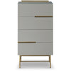 Gillmore Space | Alberto Four Drawer Narrow Chest | Grey with Brass Accent - Gillmore Space - Chest of Drawers - 119-233 - 1