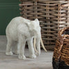 Gallery Direct Mandal White Elephant Sculpture - Gallery - Ornaments - 5055999253888 - 1