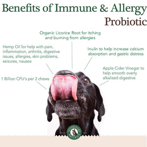 Immune & Allergy Chews 9 Pack