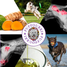 Load image into Gallery viewer, Hip & Joint 6 Pack by Pupourri 25% Off