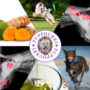 Hip & Joint 6 Pack by Pupourri 25% Off