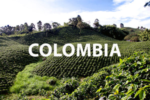 Colombia Huila Medium Dark Roast