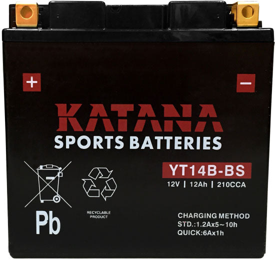 YT14B-BS Katana Motorcycle Battery 210CCA 12AH