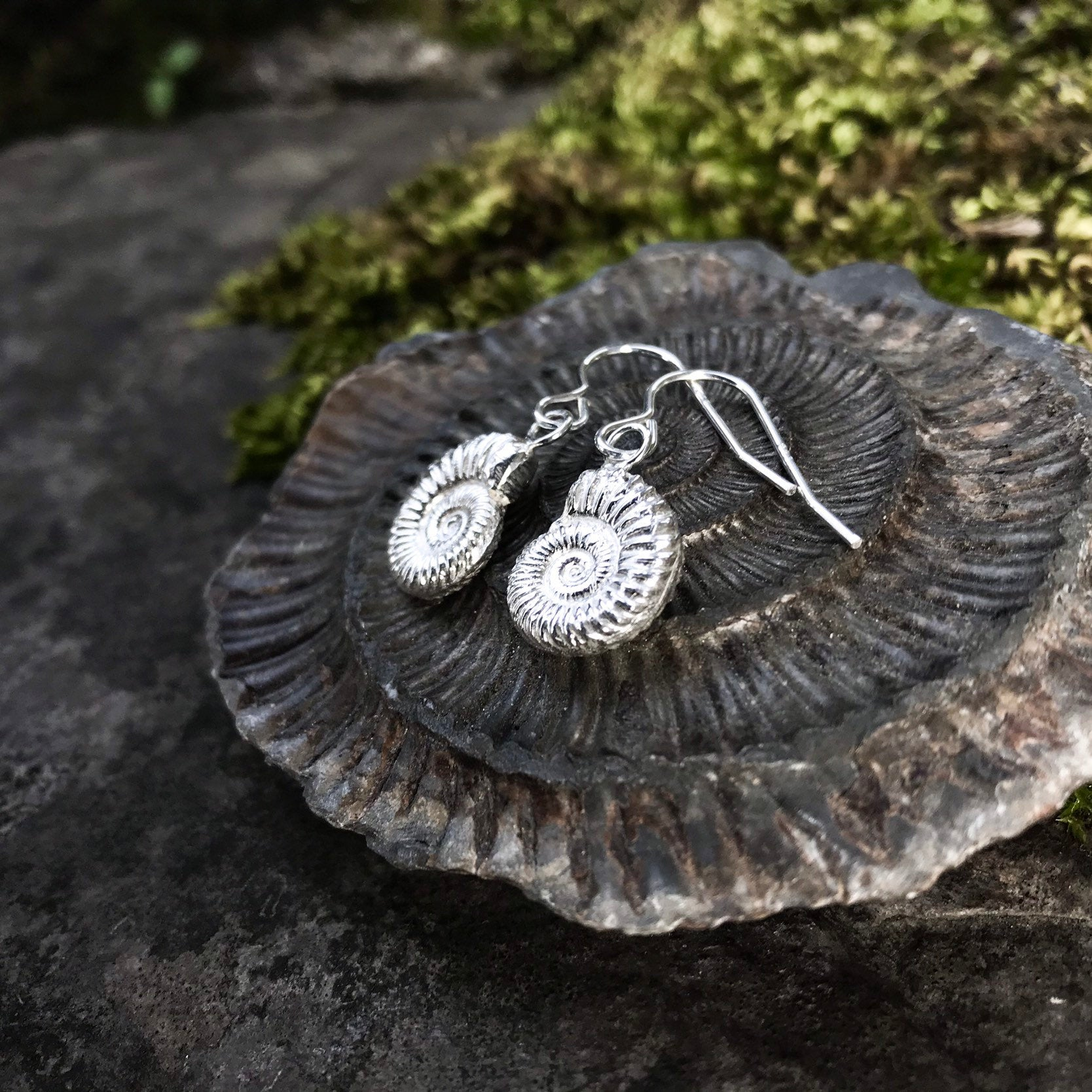Sterling Silver Ammonite Fossil Earrings