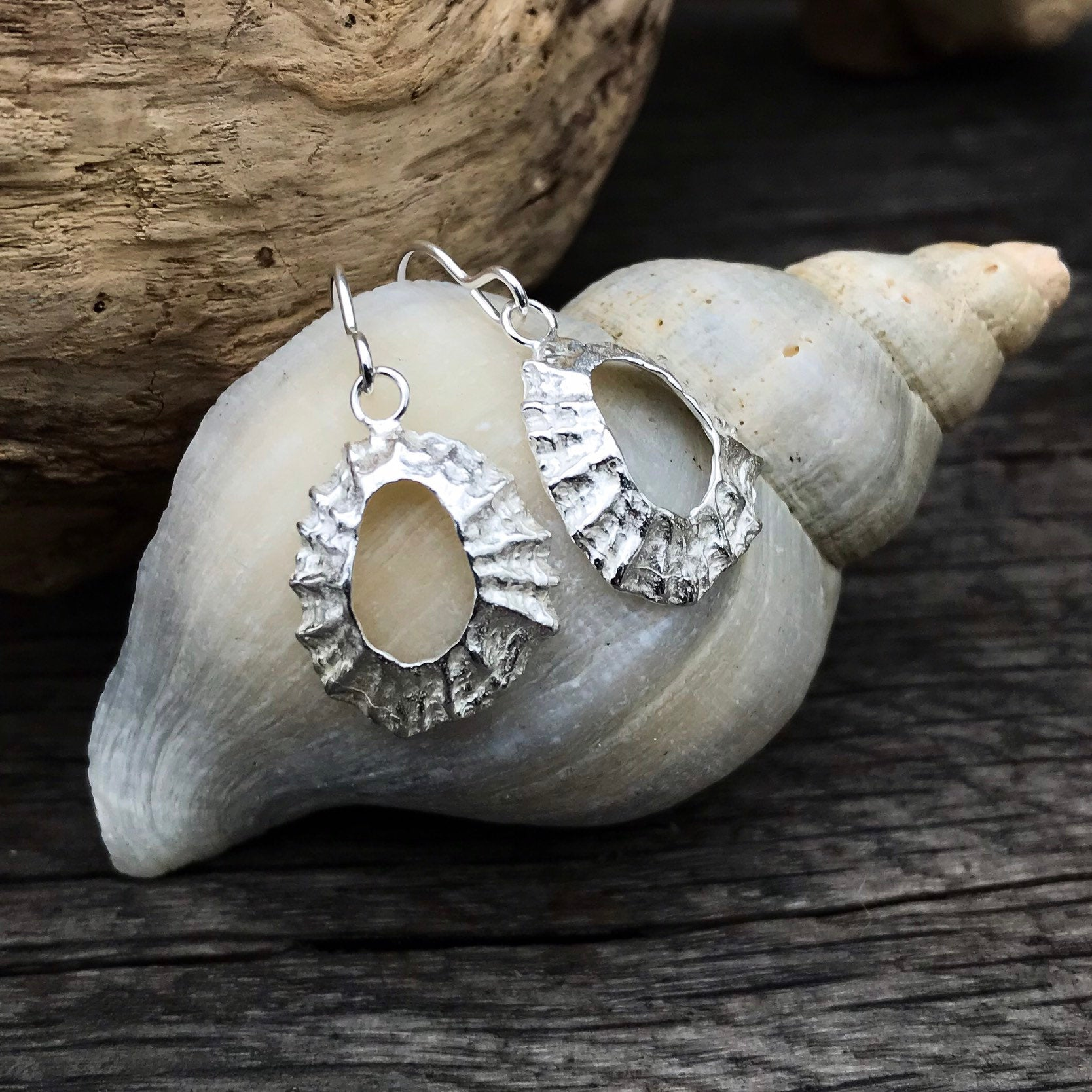 Sterling Silver Limpet Shell Earrings - Flitters