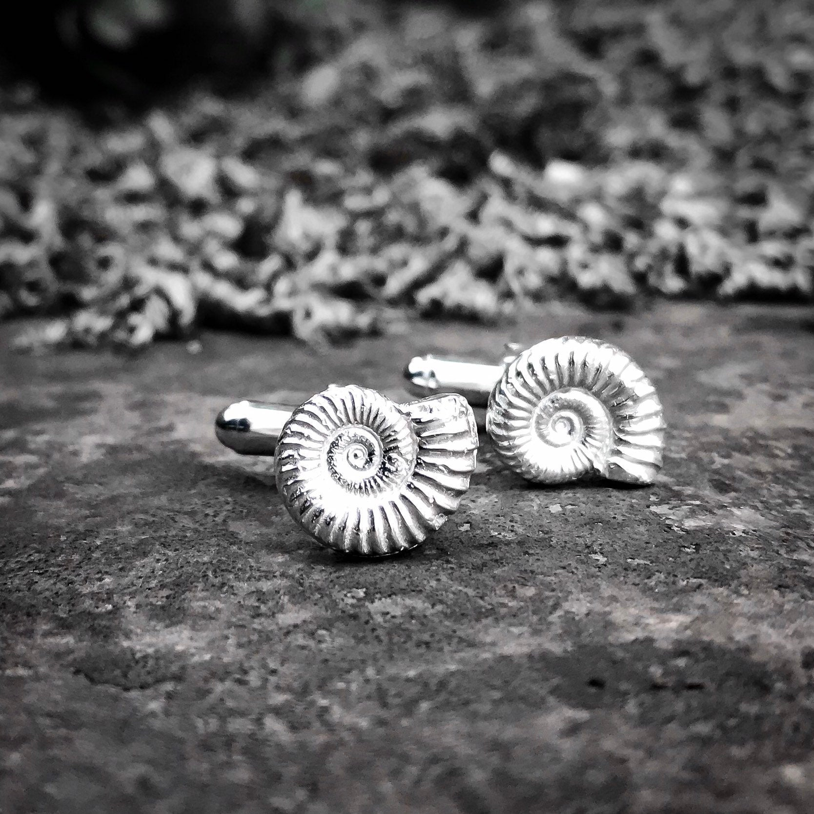Ammonite Fossil Sterling Silver Cufflinks