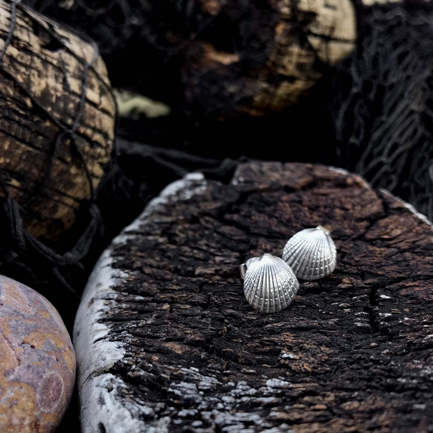 Sterling Silver Cockle Shell Stud Earrings